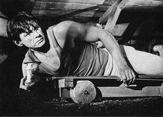"""""""La grande fuga"""" (The Great Escape, 1965) #CharlesBronson #TheGreatEscape"""