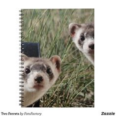 Two Ferrets Notebook Photograph of two adorable, curious ferrets peeking out of their tunnels