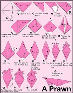 Caracol / papel, origami, papiroflexia, mar, animal