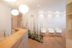 [lu:p] Architektur GmbH Coburg | Zahnarztpraxis M2