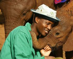 Oh my heart. .Elephants of all ages are victims of the illegal ivory trade. At the DSWT we care for the orphans left behind and you can help us. . For info about promoting your elephant art or crafts send me a direct message!  :)