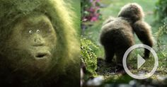 As part of a promotional campaign for Wonderlijk Wild (Miraculously Wild), an effort to encourage home gardening in Belgium, filmmaking duo Emma De Swaef and Marc James Roels of Marc & Emma were hired to create this wonderful short about a felted green ape exploring the outdoors. You might rem