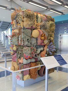 Textile Sculpture, Textile Art, Arte Coral, Creative Textiles, 3d Studio, Art Plastique, Fabric Art, Clay Crafts, Installation Art