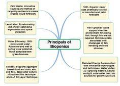 Principles of Bioponics   FAQ's   What is Bioponics