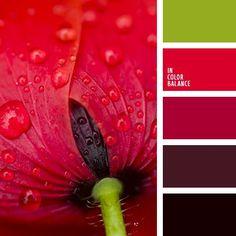 Color Palette No. Colour Schemes, Color Patterns, Color Combos, Color Harmony, Color Balance, Balance Design, Warm Colour Palette, Warm Colors, Vibrant Colors