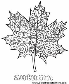 leaves coloring page 35 free --> If you're in the market for the top coloring books and supplies including gel pens, watercolors, drawing markers and colored pencils, check out our website at http://ColoringToolkit.com. Color... Relax... Chill.