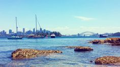 So happy I found this hidden gem.  #milkbeach #vaucluse #beach #australianbeaches #summer #sydneyharbourbridge #operahouse #sydneyharbour #cityskyline #summerlovin #sunnyday #beachfun #pretty #sydney #sydneybeaches #sydneylocal #ilovesydney #australia #iloveaustralia #australiansummer by kaleidoscope_eyes00 http://ift.tt/1NRMbNv