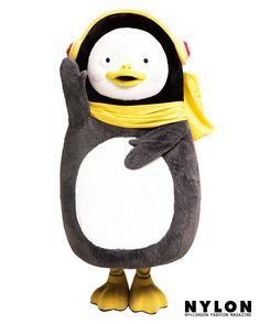 Penguins, Symbols, Humor, Pets, Wallpaper, Face, Korean, Korean Language, Humour