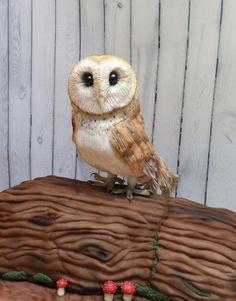 Barn Owl by Rachel Roberts