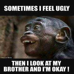 25 Funny Memes About Brothers and Touching Brother Quotes Anyone Who . - 25 funny memes about brothers and touching brother quotes Anyone who has a sibling can refer to it - Super Funny Memes, Crazy Funny Memes, Really Funny Memes, Stupid Memes, Funny Relatable Memes, Stupid Funny, Funny Humor, Hilarious Memes, Memes Humor