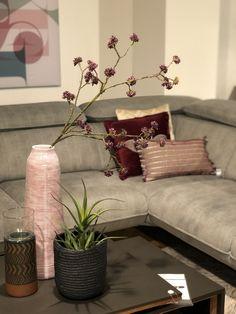 Op zoek naar leuke cadeaus voor de feestdagen? Kijk ook eens bij Trendhopper op Meubelplein Ekkersrijt! #cadeau #gift #cadeauidee #feestdagen #son #ekkersrijt #interieur #home #living #inspiratie #interior #accessoires #cadeaus #meubelpleinekkersrijt #sinterklaas #kerst #eindhoven #blog #interior #interiordesign #design #homedecor #home #architecture #decor #furniture #art #homedesign #interiors #decoration #inspiration #r #interi #interiordesigner #style #livingroom #interiorstyling Sofa, Couch, Home Design, Nars, Furniture, Home Decor, Settee, Settee, Decoration Home