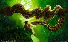 12 Best The Jungle Book 2016 images | The jungle book