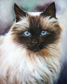 Hand-painted Animal Oil Painting - Blue Eye Cat.  Looks just like my Tei Kei. I still miss him :(
