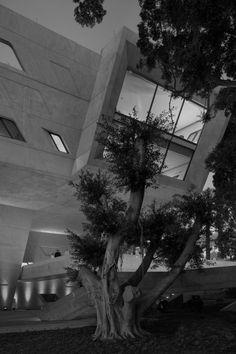 issam fares institute. zaha hadid architects. 2014.