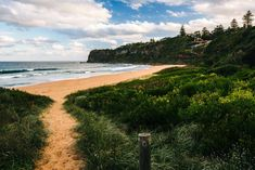 A roadtrip to Sydney's Northern Beaches, starting at Palm Beach and the Barrenjoey Lighthouse. The Beach, Palm Beach, Sydney Beaches, Day Trip, Lighthouse, Places To Travel, Travel Tips, Water, Outdoor