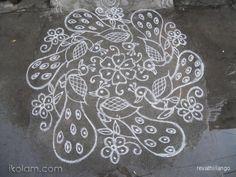 Rangoli 7 to 4 intermediate dots;: Peacock rangoli in white. by revathiilango