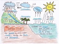 The Water Cycle Foldable, fold and learn with science doodles