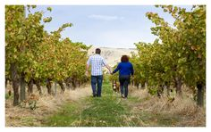 Wander off the beaten track with Way Wood Wines!