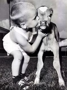 this is precious i can't get enough of this picture...probably because i love babies and cows :)