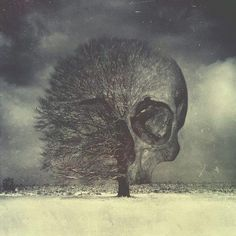 First tattoo idea?? Tree skull