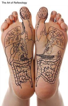 Reflexology.                                                                                                                                                     More