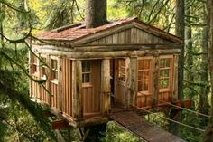 Sometimes I think I'll never see a real cool treehouse just for me!!