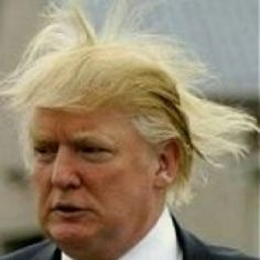 No one does 'bad hair days' better than the Donald and a little wind