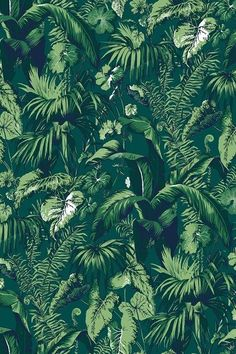 Discover hundreds of wallpaper ideas on HOUSE - design, food and travel by House & Garden including Feuillage by Madeleine Castaing at Edmond Petit