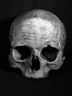 Descartes skull. He just wasn't tough enough for Sweden.