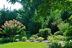 Landscape Garden Gallery. click an image to start a picture slideshow
