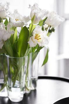 Tulips ~ Floral Design by Frida Ramstedt