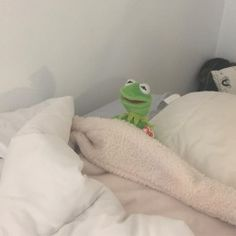 When someone wakes up Leah when she's in a deep sleep Toddler Dolls, Baby Dolls, Cute Memes, Funny Memes, Sapo Kermit, Sapo Meme, Kermit The Frog, Memes Br, Cartoon Memes