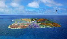 ALLPE Medio Ambiente Blog Medioambiente.org : Isla Reciclada