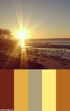 The #sun Falls Low On The Horizon, Enriching All In An Exquisite #light #sunshine #sunset #naturephotography #natureporn #autumn #sea #beach #seaside #sky #beauty Color Scheme from colorhunter.com