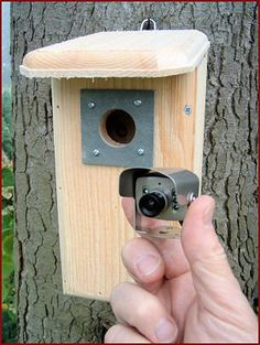 Special Offers - Backyard Birdhouse w/ Hawk Eye Nature Cam installed. Best Home Security, Security Tips, Security Cameras For Home, Home Security Systems, Nrf24l01 Arduino, Spy Cam, Top Gadgets, Security Surveillance, Security Alarm