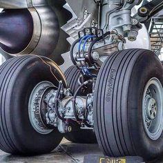 B787 Skilled Pilots