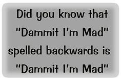 "Did you know that ""Dammit I'm Mad"" spelled backwards is ""Dammit I'm Mad"""