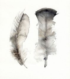 water color feathers