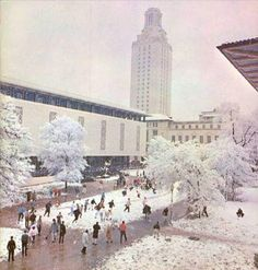 Check out this photo of a snowball fight on the West Mall at #UTAustin from 1963. Photo from the UT History Central website.