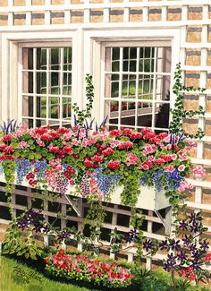 Buchart Garden's Window Box by Mary Irwin Watercolors, via Flickr