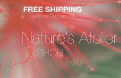 Nature's Atelier – SHOP   Erika Scilipoti