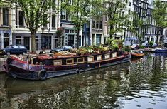 House boat in the Netherlands ~ any where in the Netherlands - see the tulips!