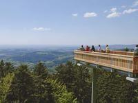 WaldWipfelWeg in Maibrunn | Bayerischer-Wald