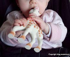 """Séquence émotion sur le blog SWEET MUM! Une première incisive vient de pointer sur la gencive du bas... et du coup """"ça mâchouille sévère la pauvre Sophie la girafe"""" ;o)"""