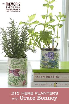 Tin Can Herb Planters - remember to make at least 5 holes in the bottom of each can for water to drain. Tear (or cut) the seed packets into small pieces which you'll combine to cover the cans. Dip your brush in the decoupage and coat small sections of the tin can with glue and then apply the seed package fragments. Apply another coat of decoupage matte adhesive on the outside of the seed packages to seal them so they are water resistant.  - loved & pinned by www.omved.com