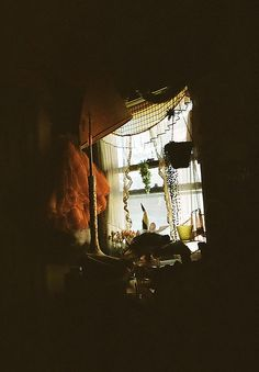 morning in mendon's room by indisposable, via Flickr