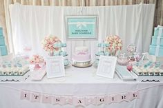 Welcoming Baby Addison!! We changed the theme to Addison &  Co. I cant wait to meet my niece!!!