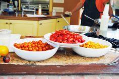 Chicago Botanic Garden's Heirloom Tomato Festival: A Sneak Peek