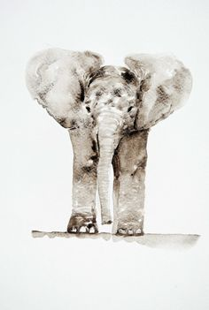 Baby elephant watercolor painting by Barbara Luel