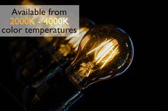 Did you know we have filament-style LED antique bulbs in color temperature ranging from very warm white in 2000K to blue-hued cool white in 4000K? Get the light color you want in a style you love at 1000Bulbs.com! Edison Bulbs, Incandescent Bulbs, Vintage Led Bulbs, Patio String Lights, Color Temperature, Light Project, Vintage Lighting, Light Decorations, Light Colors